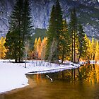 """Winter Color"" by Donn Hoyer"