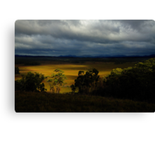 Into the heart of the Tarkine Canvas Print