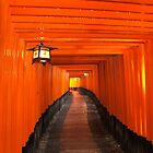Torii Gates by Greenhorn
