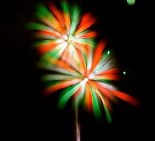 July 3 Fireworks Flower by greg1701
