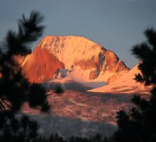 Longs Peek by NatureGreeting Cards ©ccwri