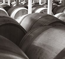 Barrels in the Vineyard by Michael Stocks