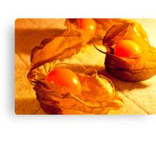 Fruit in a Basket: Physalis Fruit Canvas Print