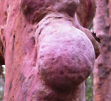 Tree Illusion by largo