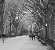 Central Park Mall by ashley-dawn