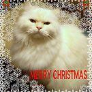 MERRY CHRISTMAS by trisha22