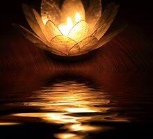 Light reflective by Angela King-Jones