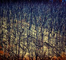 scorched earth by Greg Carrick