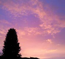 Pink Valley Sunset by rhian mountjoy