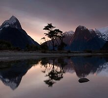 Milford Sound. by Michael Treloar