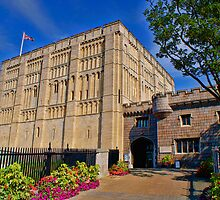 Norwich Castle Museum by Mark Snelling