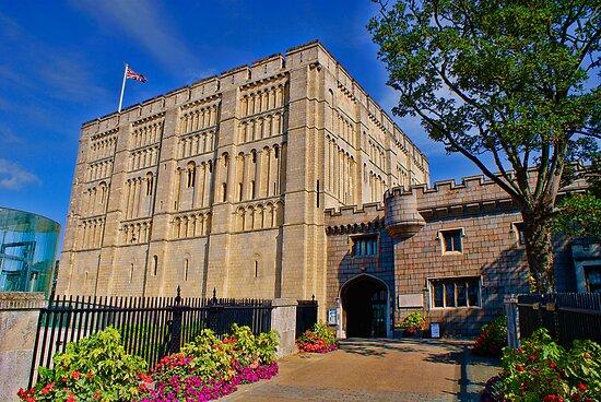 Norwich Castle Museum by Mark Snelling