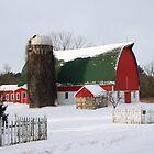A Wisconsin Winter by Lynne Prestebak