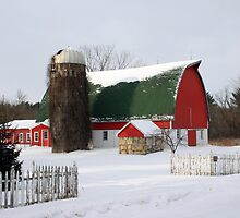 A Wisconsin Winter by Lynne Prestebak