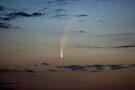 McNaught's Comet. by Michael Treloar