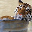 Tiger In a Tub by Stephanie A Marks