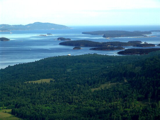 Southern Gulf Islands by George Cousins