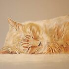 Henry - Sleeping by Jill Tisbury