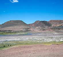 The Andean Altiplano, Paso de Jama, Argentina by parischris