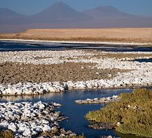 Licancabur volcano from Cejar Pond, Atacama Desert, Chile by parischris