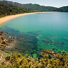 Totaranui Beach, Abel Tasman National Park by Paul Mercer