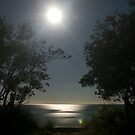 Moon over Totaranui Beach by Paul Mercer