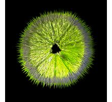 Spiked Lime Photographic Print