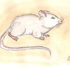 Mouse by Claire Elford