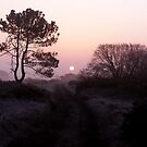 Pembrey Sunrise by Stephen Peters