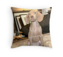 ARE WE GOING OUT? Throw Pillow