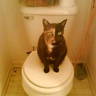 Toilet Kitty by Leeannarose