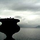 Misty Urn - Lake Como, Italy by Kris McLennan