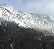 Eagle Cliff - Franconia Notch, New Hampshire, USA by Dave Martsolf
