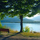 Bench with a View by Indelibly-Yours