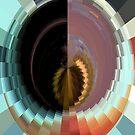The Color Wheel by Linda Miller Gesualdo