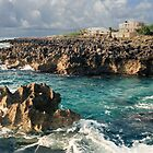 Curacao beach waves by Jerry Clitty