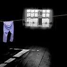 Blue Pants in an Attic  by Wayne King