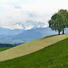 Swiss Landscape by Kris McLennan