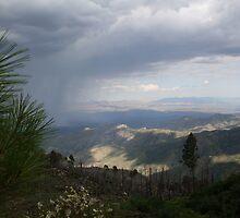 Desert Storm, AZ.! by DaveDawdy