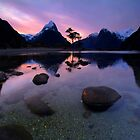 Milford Sound, Fiordland National Park by Paul Mercer