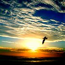 SUNRISE FLIGHT (SPIRITUALITY) by Scott  d&#x27;Almeida