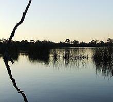 Yangebup Lake by Rawiri Hinder