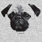 Mops puppy by fuxart