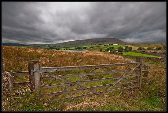 Barley views by Shaun Whiteman
