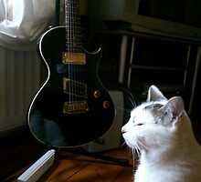 The Cat and the Guitar by Ladymoose