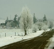 Farm and Rural Road In The Aftermath of A Winter  Ice Storm by DMHImages