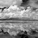 North Lake Myakka by MKWhite