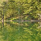 umbrian lake reflection by ally mcerlaine