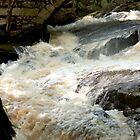 Gleason Falls by Roslyn Lunetta