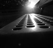 Sunlit Seat by Nick McGuire